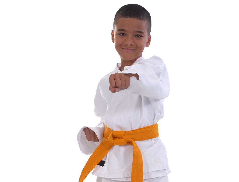 young boy in martial arts stance